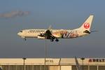 ☆ライダーさんが、成田国際空港で撮影した日本航空 737-846の航空フォト(飛行機 写真・画像)