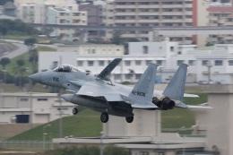 camelliaさんが、那覇空港で撮影した航空自衛隊 F-15J Eagleの航空フォト(飛行機 写真・画像)