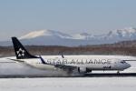 GRX135さんが、新千歳空港で撮影した全日空 737-881の航空フォト(飛行機 写真・画像)