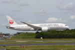 kuro2059さんが、成田国際空港で撮影した日本航空 787-8 Dreamlinerの航空フォト(飛行機 写真・画像)