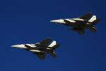 K.Tさんが、入間飛行場で撮影した航空自衛隊 F-15J Eagleの航空フォト(飛行機 写真・画像)