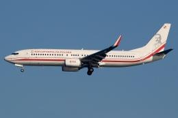 JRF spotterさんが、羽田空港で撮影したポーランド政府 737-86Xの航空フォト(飛行機 写真・画像)