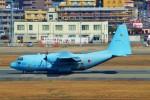 ちっとろむさんが、福岡空港で撮影した航空自衛隊 C-130H Herculesの航空フォト(飛行機 写真・画像)