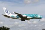 kuro2059さんが、成田国際空港で撮影した全日空 A380-841の航空フォト(飛行機 写真・画像)