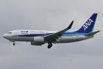 camelliaさんが、那覇空港で撮影した全日空 737-781の航空フォト(飛行機 写真・画像)