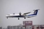 けいとパパさんが、福岡空港で撮影したANAウイングス DHC-8-402Q Dash 8の航空フォト(飛行機 写真・画像)