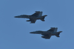 NFファンさんが、厚木飛行場で撮影したアメリカ海軍 EA-18G Growlerの航空フォト(飛行機 写真・画像)