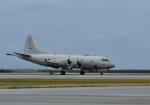 くーぺいさんが、那覇空港で撮影した海上自衛隊 P-3Cの航空フォト(飛行機 写真・画像)