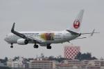 camelliaさんが、那覇空港で撮影した日本トランスオーシャン航空 737-8Q3の航空フォト(飛行機 写真・画像)