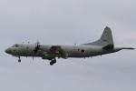 camelliaさんが、那覇空港で撮影した海上自衛隊 P-3Cの航空フォト(飛行機 写真・画像)