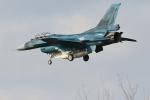 bakさんが、岐阜基地で撮影した航空自衛隊 F-2Aの航空フォト(飛行機 写真・画像)