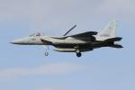 bakさんが、岐阜基地で撮影した航空自衛隊 F-15J Eagleの航空フォト(飛行機 写真・画像)