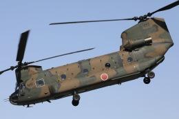 Hii82さんが、八尾空港で撮影した陸上自衛隊 CH-47Jの航空フォト(飛行機 写真・画像)