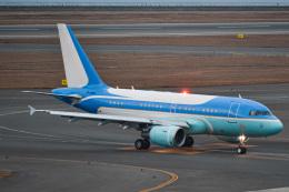 TulipTristar 777さんが、中部国際空港で撮影したヤーリアン・ビジネスジェット A318-112 CJ Eliteの航空フォト(飛行機 写真・画像)