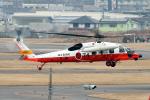 なごやんさんが、名古屋飛行場で撮影した海上自衛隊 UH-60Jの航空フォト(飛行機 写真・画像)