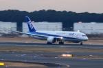 Hiro-hiroさんが、成田国際空港で撮影した全日空 787-8 Dreamlinerの航空フォト(飛行機 写真・画像)