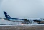 Cygnus00さんが、新千歳空港で撮影した全日空 777-281の航空フォト(飛行機 写真・画像)