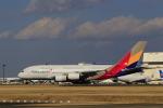 ☆ライダーさんが、成田国際空港で撮影したアシアナ航空 A380-841の航空フォト(飛行機 写真・画像)
