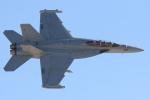 キャスバルさんが、ネリス空軍基地で撮影したアメリカ海軍 EA-18G Growlerの航空フォト(飛行機 写真・画像)