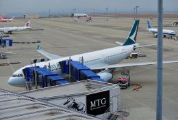 mojioさんが、中部国際空港で撮影したキャセイパシフィック航空 A330-342の航空フォト(飛行機 写真・画像)