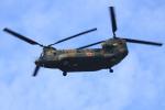 K.Tさんが、朝霞駐屯地で撮影した陸上自衛隊 CH-47JAの航空フォト(飛行機 写真・画像)
