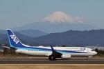 camelliaさんが、静岡空港で撮影した全日空 737-881の航空フォト(飛行機 写真・画像)