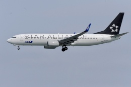 Suzukenさんが、那覇空港で撮影した全日空 737-881の航空フォト(飛行機 写真・画像)