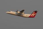 Koenig117さんが、シドニー国際空港で撮影したイースタン・オーストラリア・エアラインズ DHC-8-315Q Dash 8の航空フォト(飛行機 写真・画像)