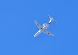 GOQさんが、函館空港で撮影した国土交通省 航空局 525C Citation CJ4の航空フォト(飛行機 写真・画像)