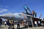 K.Tさんが、厚木飛行場で撮影したアメリカ海軍 F/A-18F Super Hornetの航空フォト(飛行機 写真・画像)