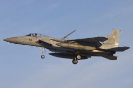 航空フォト:02-8921 航空自衛隊 F-15J Eagle