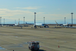 mojioさんが、中部国際空港で撮影したZIPAIR 787-8 Dreamlinerの航空フォト(飛行機 写真・画像)