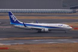 やつはしさんが、羽田空港で撮影した全日空 737-881の航空フォト(飛行機 写真・画像)