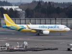 FT51ANさんが、成田国際空港で撮影したセブパシフィック航空 A320-214の航空フォト(飛行機 写真・画像)