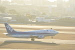 どんちんさんが、伊丹空港で撮影したANAウイングス 737-54Kの航空フォト(飛行機 写真・画像)