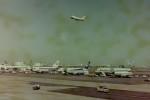 ヒロリンさんが、羽田空港で撮影した全日空 L-1011 TriStarの航空フォト(飛行機 写真・画像)