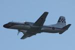 Sharp Fukudaさんが、入間飛行場で撮影した航空自衛隊 YS-11A-218EAの航空フォト(飛行機 写真・画像)