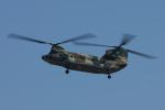 Sharp Fukudaさんが、入間飛行場で撮影した航空自衛隊 CH-47J/LRの航空フォト(飛行機 写真・画像)