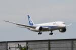 kuro2059さんが、成田国際空港で撮影した全日空 787-8 Dreamlinerの航空フォト(飛行機 写真・画像)
