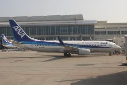 uhfxさんが、那覇空港で撮影した全日空 737-881の航空フォト(飛行機 写真・画像)