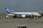 uhfxさんが、那覇空港で撮影した全日空 787-8 Dreamlinerの航空フォト(飛行機 写真・画像)