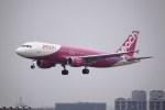けいとパパさんが、福岡空港で撮影したピーチ A320-214の航空フォト(飛行機 写真・画像)