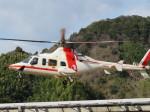 ランチパッドさんが、静岡ヘリポートで撮影した朝日航洋 430の航空フォト(飛行機 写真・画像)
