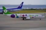 SFJ_capさんが、那覇空港で撮影した9エア 737-86Xの航空フォト(飛行機 写真・画像)