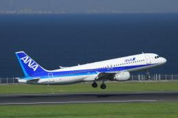 K.Tさんが、羽田空港で撮影した全日空 A320-211の航空フォト(飛行機 写真・画像)