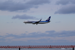 TAKAHIDEさんが、新潟空港で撮影した全日空 737-881の航空フォト(飛行機 写真・画像)