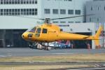 あきらっすさんが、東京ヘリポートで撮影したオールラウンドヘリコプター AS350B Ecureuilの航空フォト(飛行機 写真・画像)