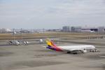 トレインさんが、羽田空港で撮影したアシアナ航空 A330-323Xの航空フォト(飛行機 写真・画像)
