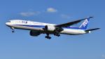 saoya_saodakeさんが、成田国際空港で撮影した全日空 777-381/ERの航空フォト(飛行機 写真・画像)