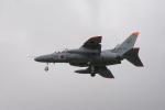 エアさんが、那覇空港で撮影した航空自衛隊 T-4の航空フォト(飛行機 写真・画像)